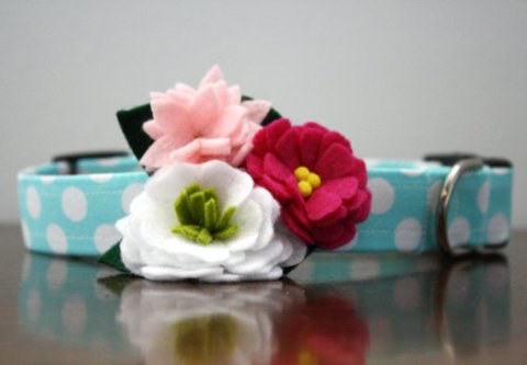 polka dots,flowers ,pet collar,wedding pets,Wed Eclectic