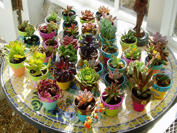 A Garden Wedding – Hand Painted Flower Pot Favors and Succulents ...