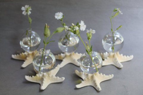 starfishbudvaseweddingguestgift